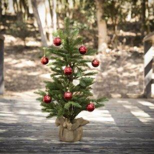 christmas-tree-2895143_1920