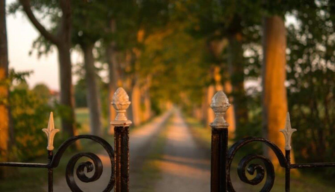 fence 996620_1920