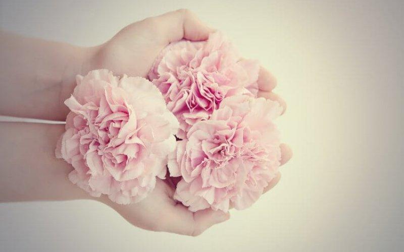 flowers-1359281_1280