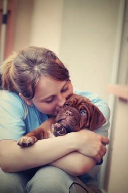 puppy-742616_1280