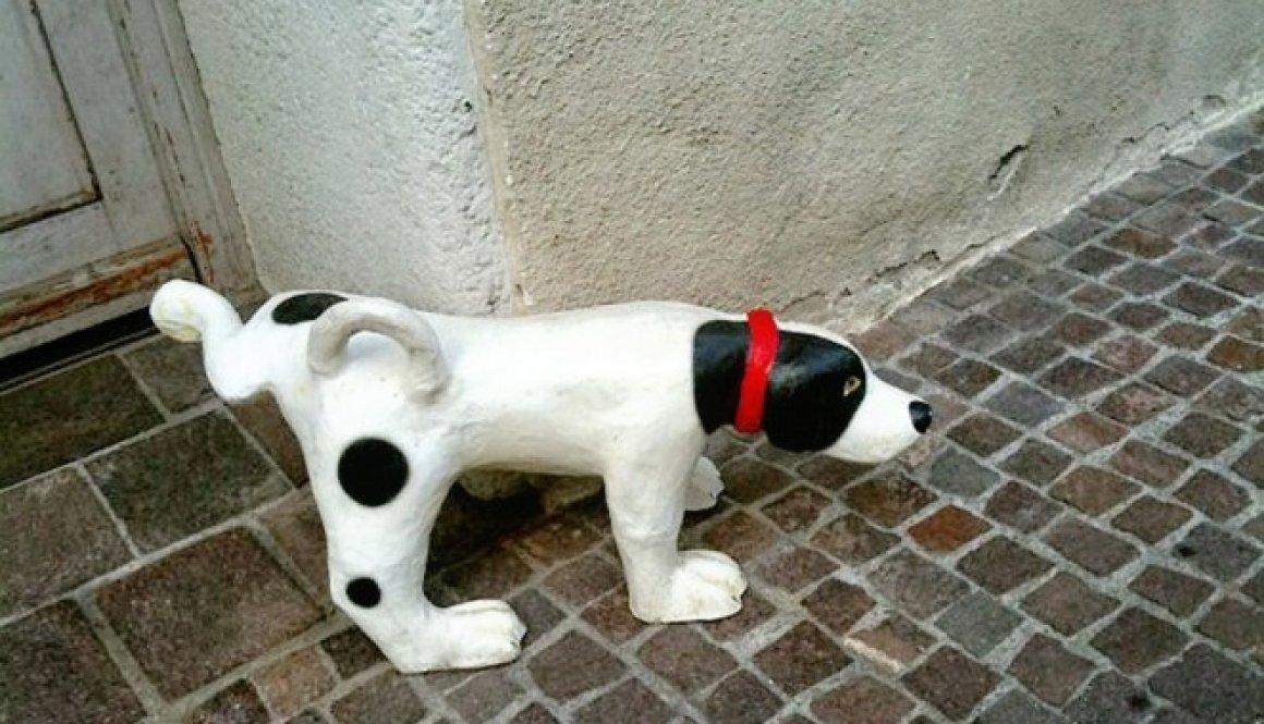 stone dog 194453_1280